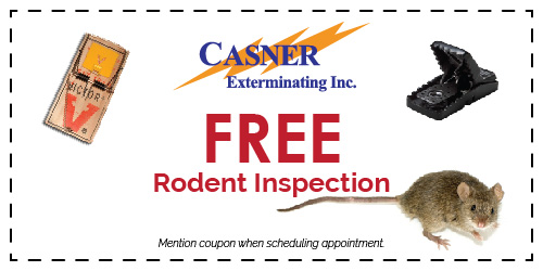 Casner Exterminating Coupon Castroville CA