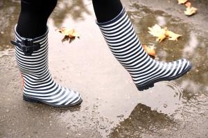 rainy day pest prevention