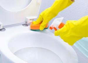 pest free toilet
